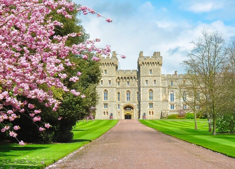 Weiter Spaziergang zu Windsor-Schloss im Frühjahr, London-Vororte, Großbritannien stockfotografie