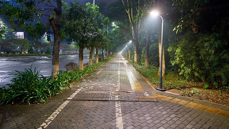 Weitwinkelansicht der grünen Baumgasse und der Fußgängerziegelsteinstraße auf Chinesisch Shenzhen stockfoto