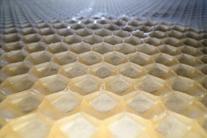 Weitwinkelmakroschuß des Bienenwabenwachses Abstrakte Ansicht des Honigkammhexagon-Formmusters lizenzfreie stockbilder