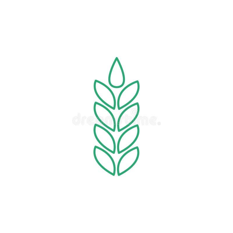 Weizenährelinie Ikone, Entwurfsvektorzeichen, lineares Artpiktogramm lokalisiert auf Weiß Symbol, Logoillustration editable vektor abbildung