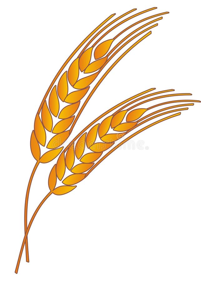 Weizen stock abbildung