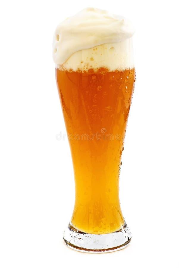 Weizen-Bier stockfotografie