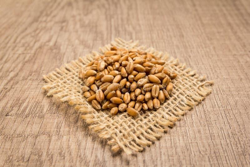 Weizen-Getreidekorn Körner auf quadratischem Ausschnitt des Jutefasers Hölzernes Tabl lizenzfreies stockbild