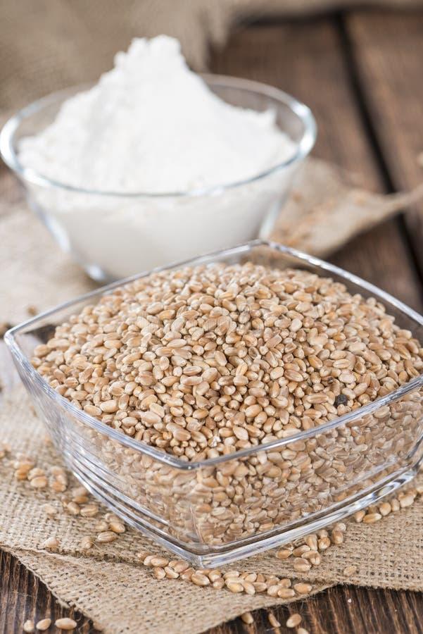 Weizen-Körner mit Mehl lizenzfreie stockbilder