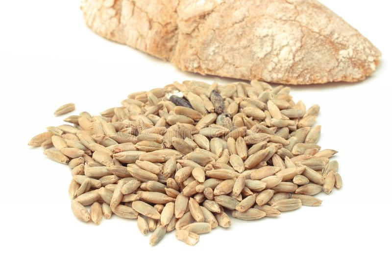 Weizen- oder Roggenkörner und Stück Brot auf weißem Hintergrund stockfotos