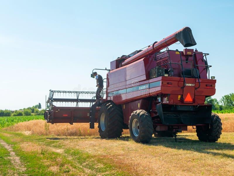 Weizenernte im Sommer Rote Ernteerträge vor Ort Erntezeit für landwirtschaftliche Maschinen mit Goldener Reifenernte stockfoto