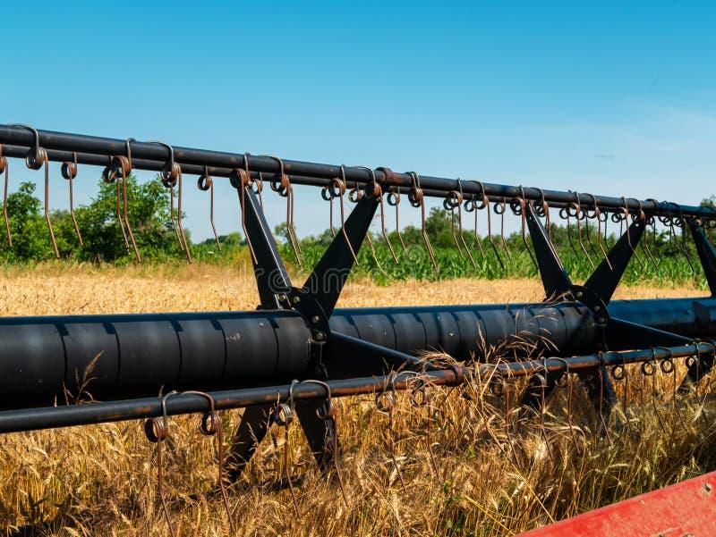 Weizenernte im Sommer Rote Ernteerträge vor Ort Erntezeit für landwirtschaftliche Maschinen mit Goldener Reifenernte lizenzfreie stockbilder
