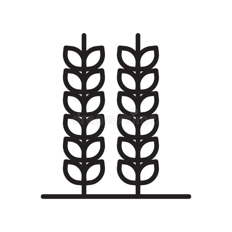 Weizenikonenvektorzeichen und -symbol lokalisiert auf weißem Hintergrund, Weizenlogokonzept, Entwurfssymbol, lineares Zeichen, En lizenzfreie abbildung