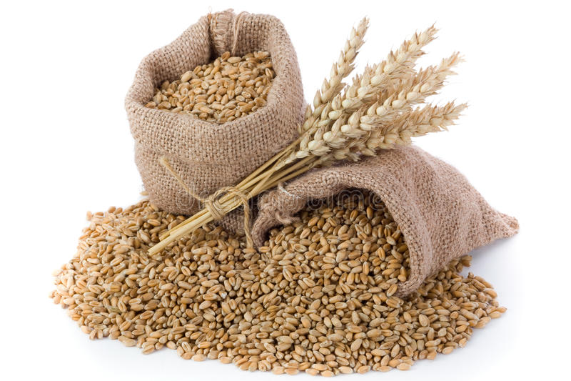Weizenkorn lizenzfreies stockfoto