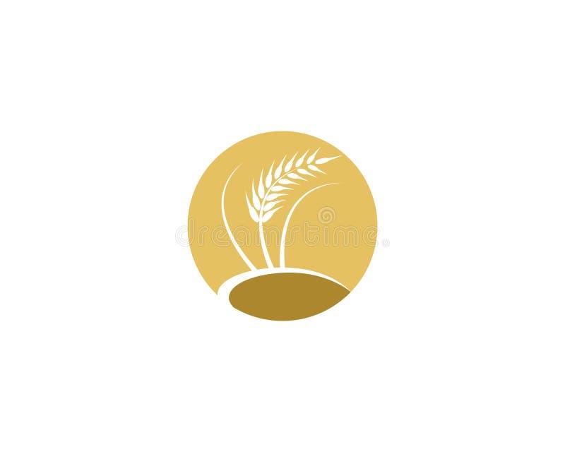 Weizenvektor-Ikonenillustration stock abbildung