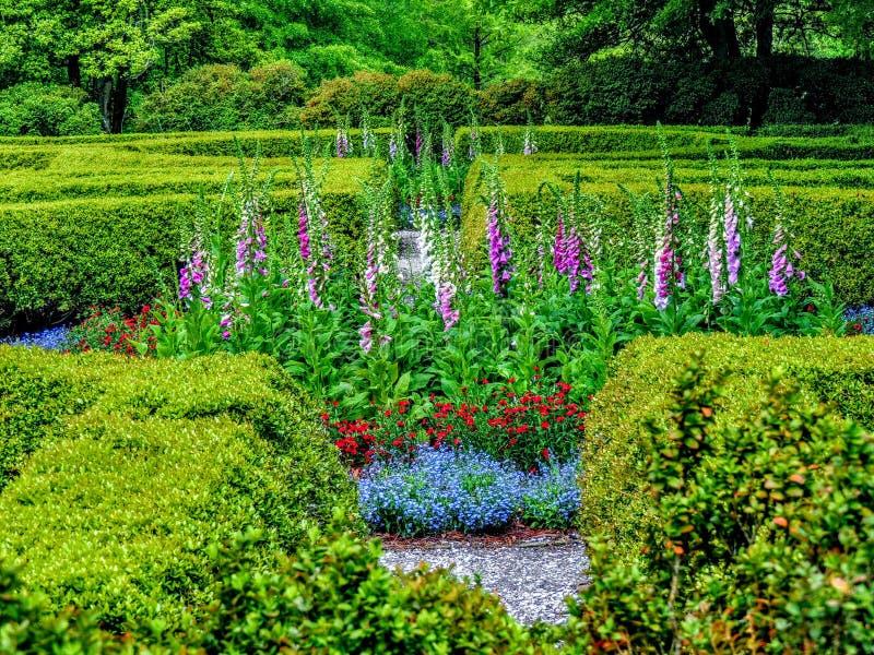 Wejście ogród dziewictwo zdjęcia royalty free