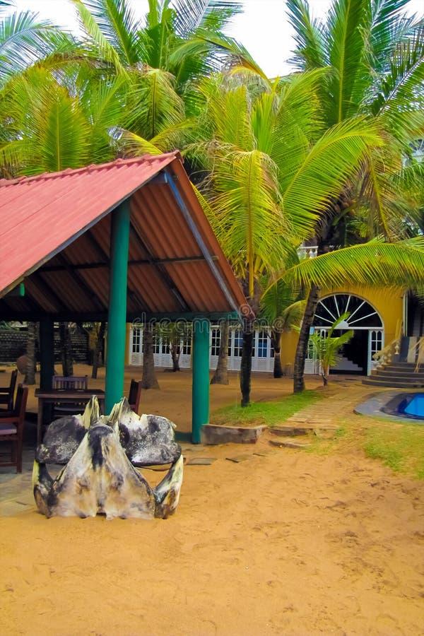 Wejście plażowy hotel w tropikalnym kurorcie zdjęcia royalty free
