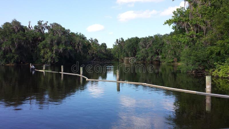 Wekiwa balza parco di stato immagini stock