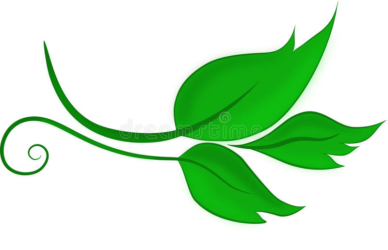 Wektorów zieleń barwiący liście fotografia stock