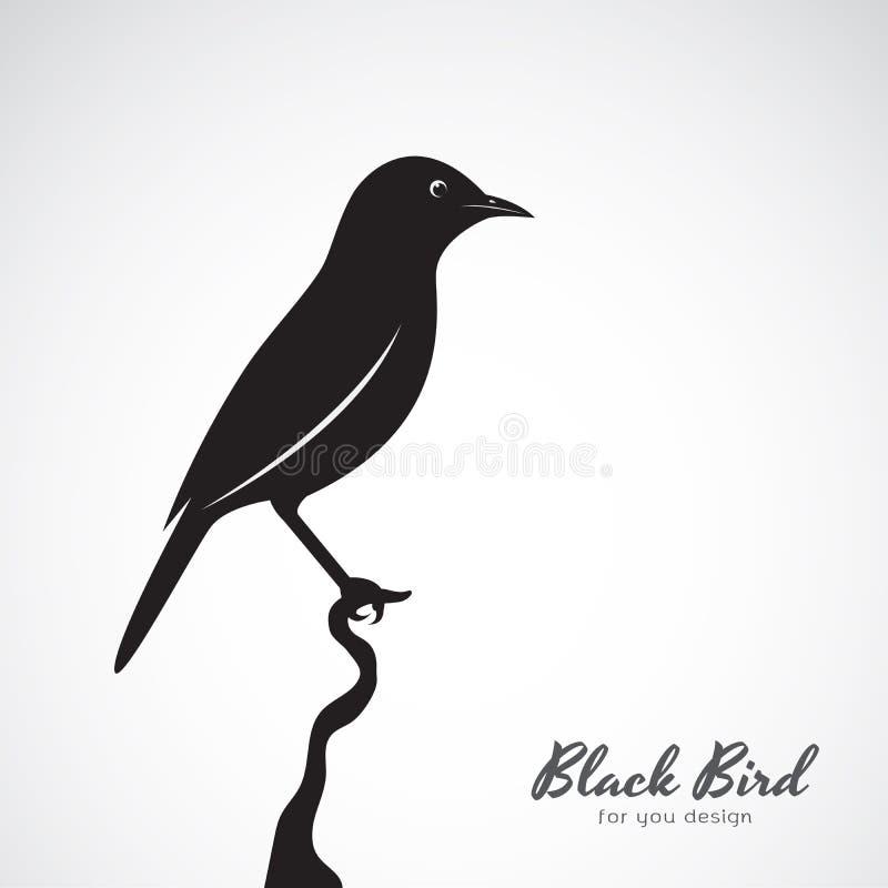 Wektor czarny ptak na białym tle zwierzę ilustracji