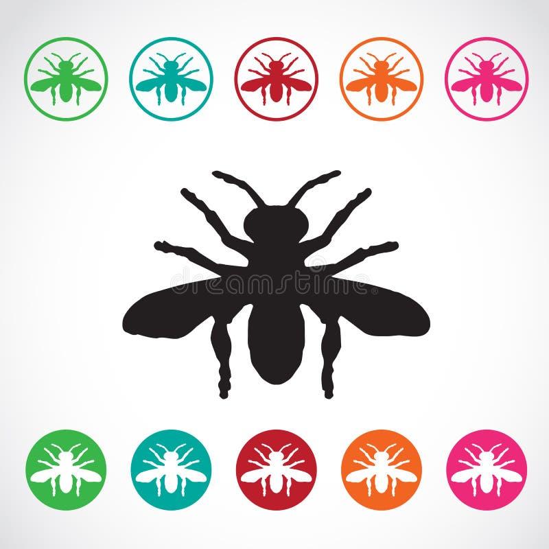 Wektor grupa insekty na białym tle ilustracja wektor