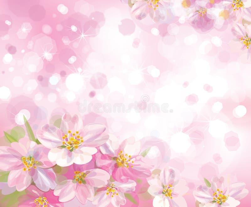 Wektor kwitnie drzewa z różowym backgro wiosna royalty ilustracja