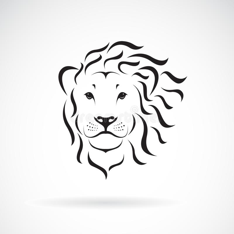 Wektor lew głowy projekt na białym tle dzikich zwierząt ilustracja wektor