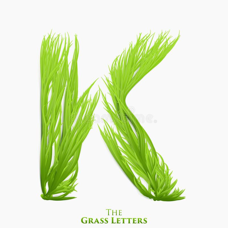 Wektor listowy soczysty trawy abecadło K Zielony K symbolu składać się z narastająca trawa Realistyczny abecadło organicznie ilustracji