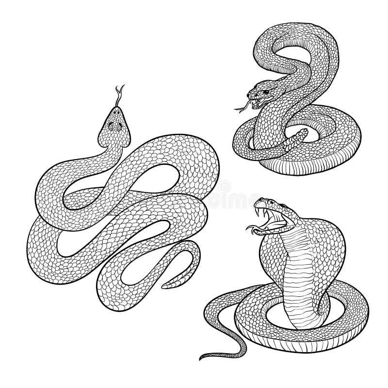 Wektor odizolowywał ilustracje ustawia agresywnych venomous węże przygotowywających skakać Postać niebezpieczni gady kobra i grze royalty ilustracja