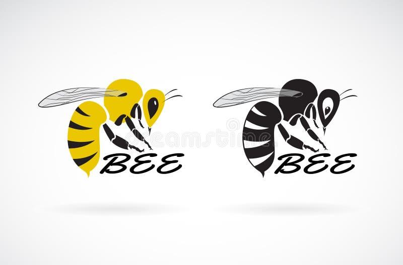 Wektor pszczoła projekt na białym tle insekt Łatwa editable płatowata wektorowa ilustracja royalty ilustracja