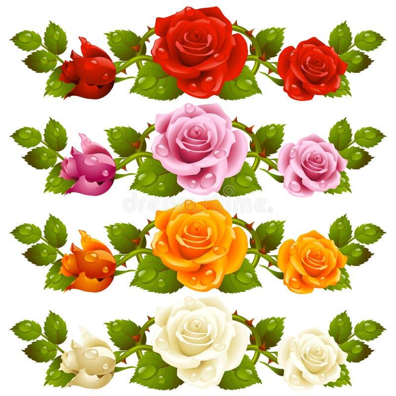 Wektor róży horyzontalna winieta odizolowywająca na tle