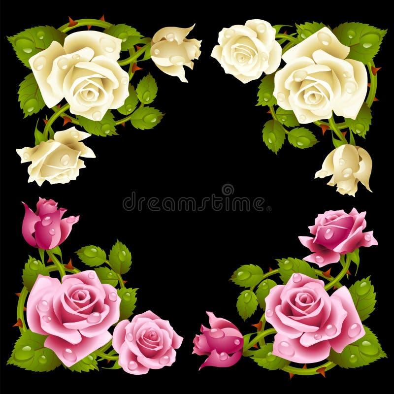 Wektor róży kąt odizolowywający na czarnym tle ilustracji