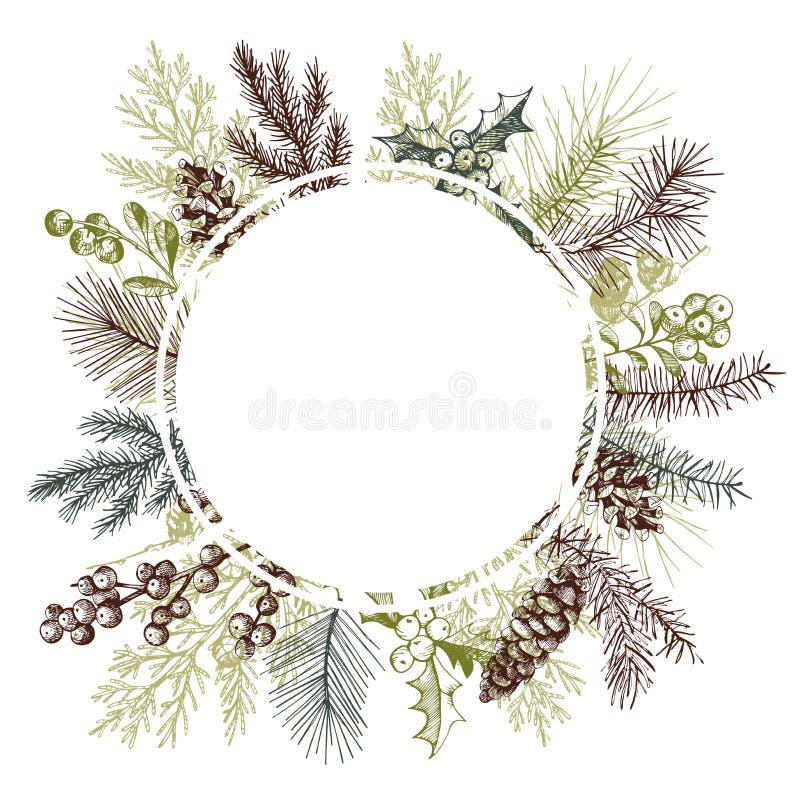 Wektor rama z ręki rysować boże narodzenie roślinami ilustracji