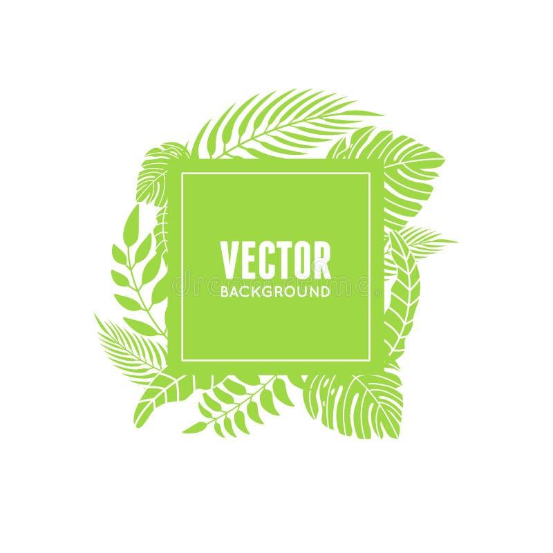 Wektor rama z tropikalnymi zielonymi liśćmi ilustracji