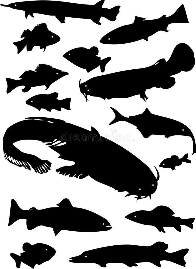 wektor ryb royalty ilustracja