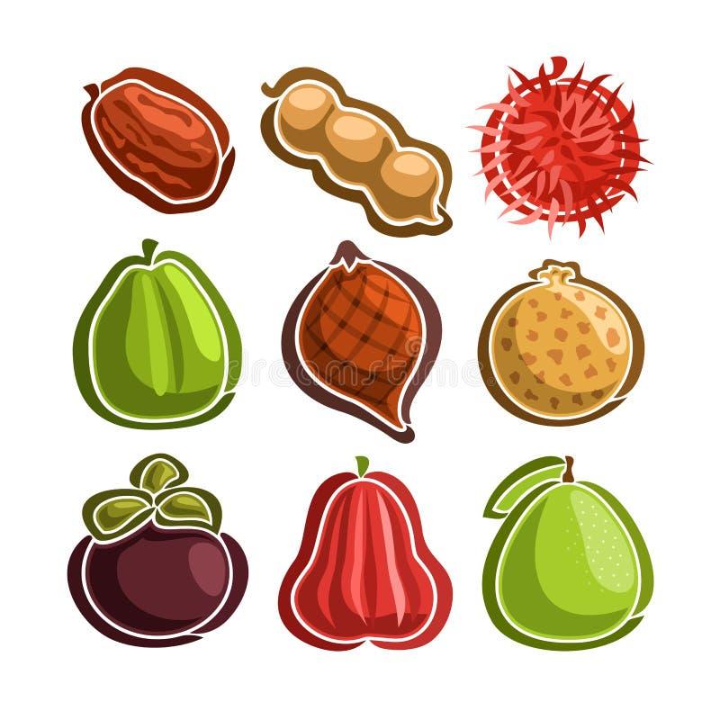 Wektor Ustalone ikony kolorowe egzotyczne owoc royalty ilustracja