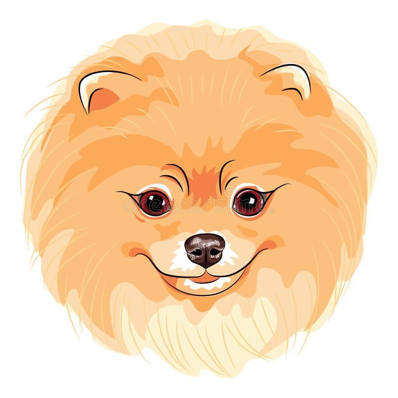 Wektorowa śliczna psia pomorzanka royalty ilustracja