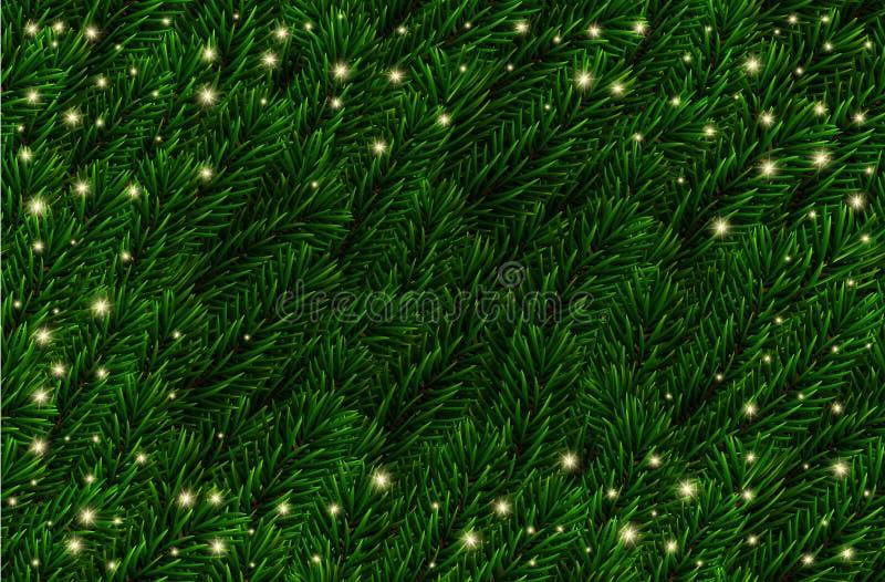 Wektorowa świąteczna sosna Rozgałęzia się tło Jedlinowi gałąź boże narodzenia wzory, światła Realistyczne zielone świerkowe gałąź ilustracja wektor