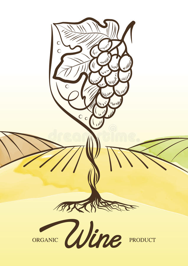 Wektorowa akwareli ilustracja winogradu winogrono wewnątrz i wiejski pole ilustracja wektor