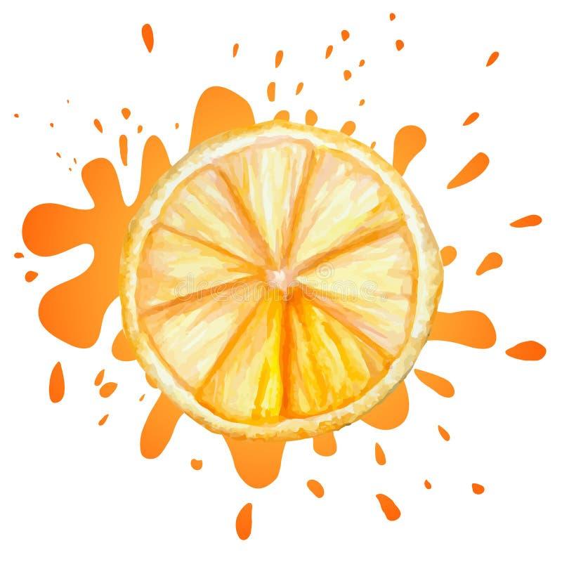 Wektorowa akwareli pomarańcze ilustracji
