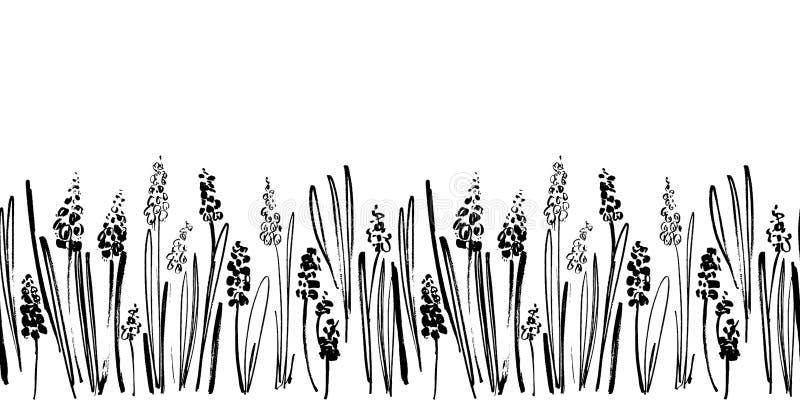 Wektorowa bezszwowa granica z atramentów rysunkowymi hiacyntami, ziele i kwiatami, monochromatyczna artystyczna botaniczna ilustr ilustracja wektor
