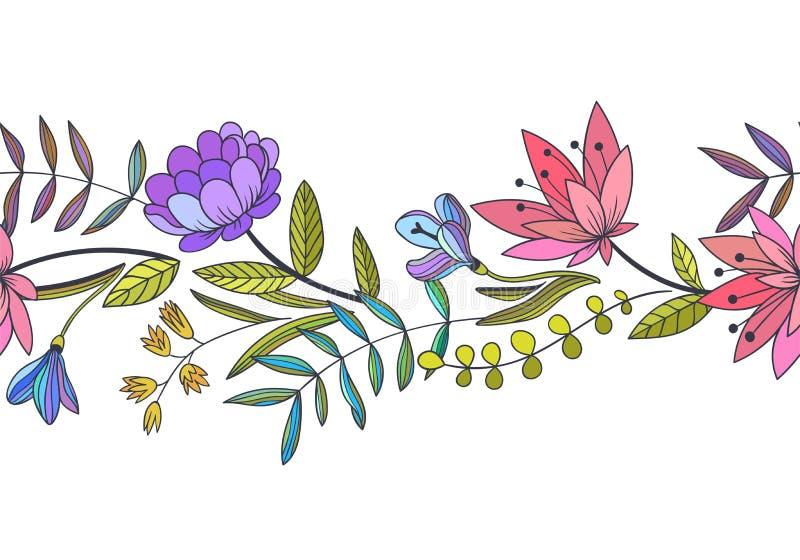 Wektorowa bezszwowa kwiecista granica Ręka rysująca botaniczna ilustracja ilustracja wektor