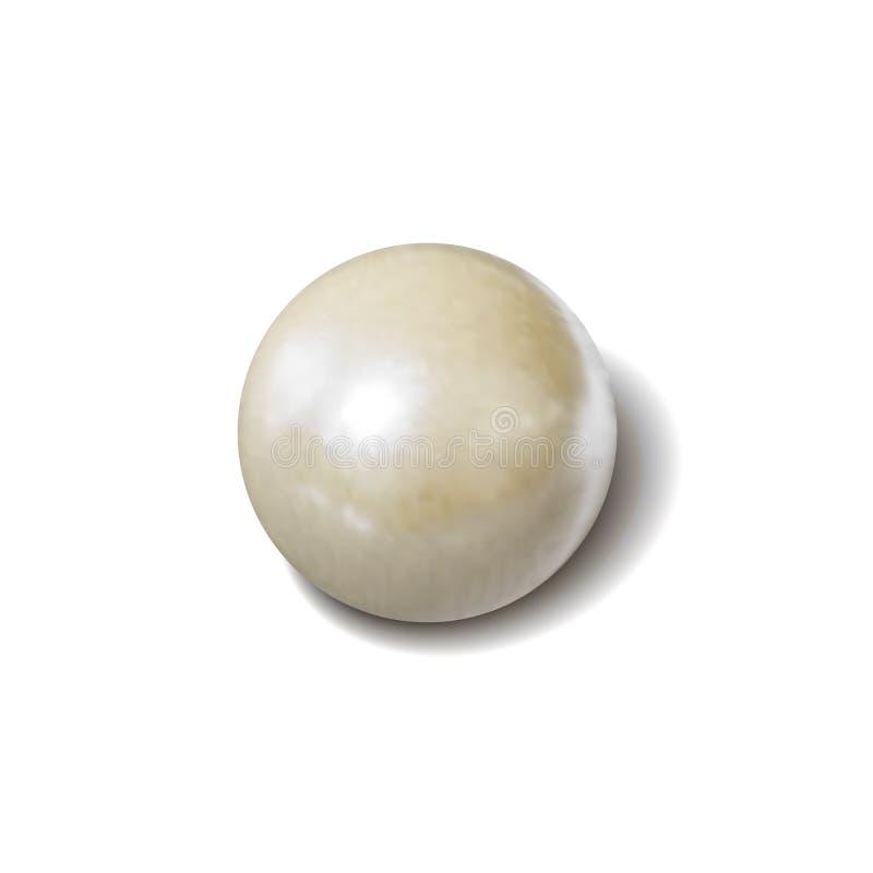Wektorowa biel perła, fotografii Realistyczna ilustracja, przedmiot z cieniem Odizolowywającym fotografia royalty free