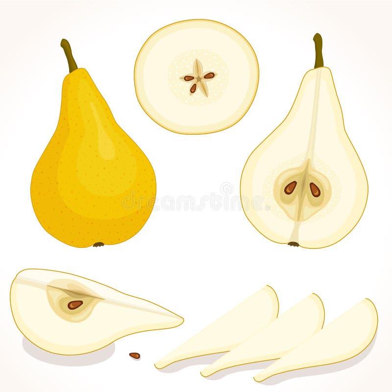 Wektorowa bonkreta Pokrojony, cały, przyrodni jabłko, ilustracja wektor
