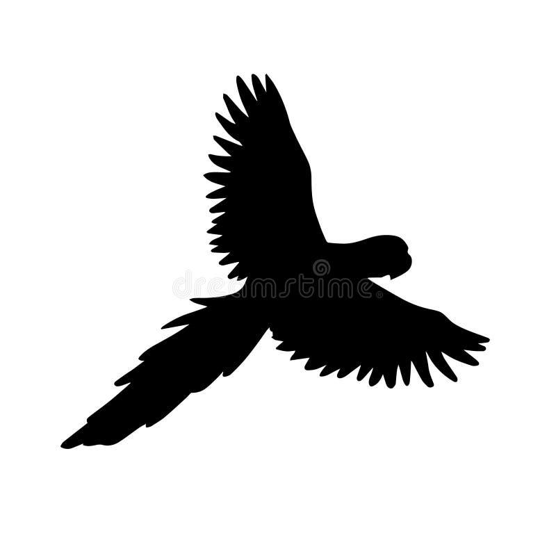 Wektorowa czarna sylwetka latająca papuzia ara royalty ilustracja