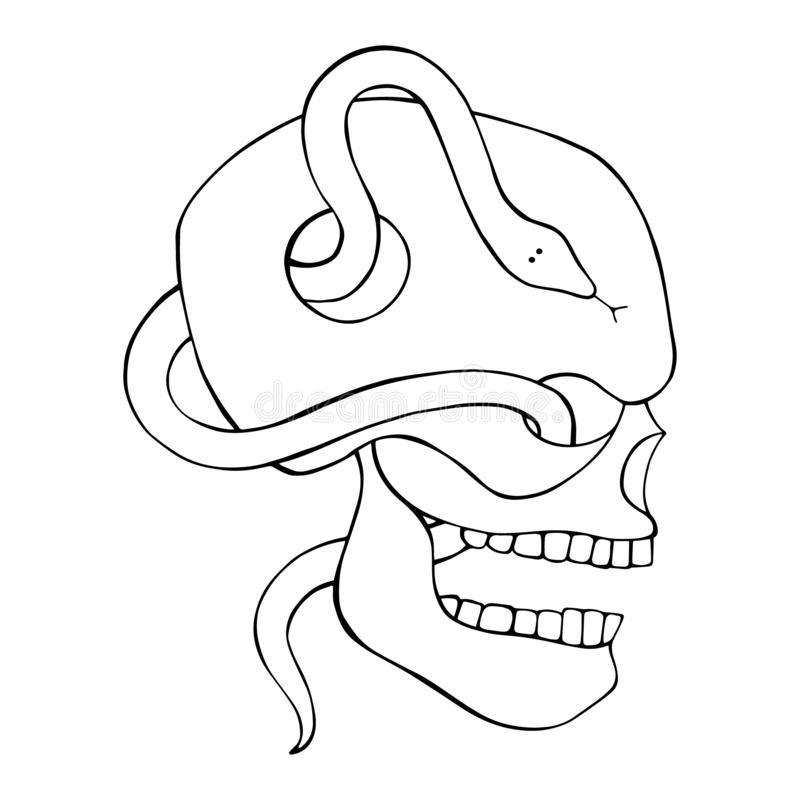 Wektorowa czarny i biały ręka rysująca ilustracja czaszka z wężem, ząb, sylwetki ludzki druku horror dla t koszula twarz ilustracja wektor