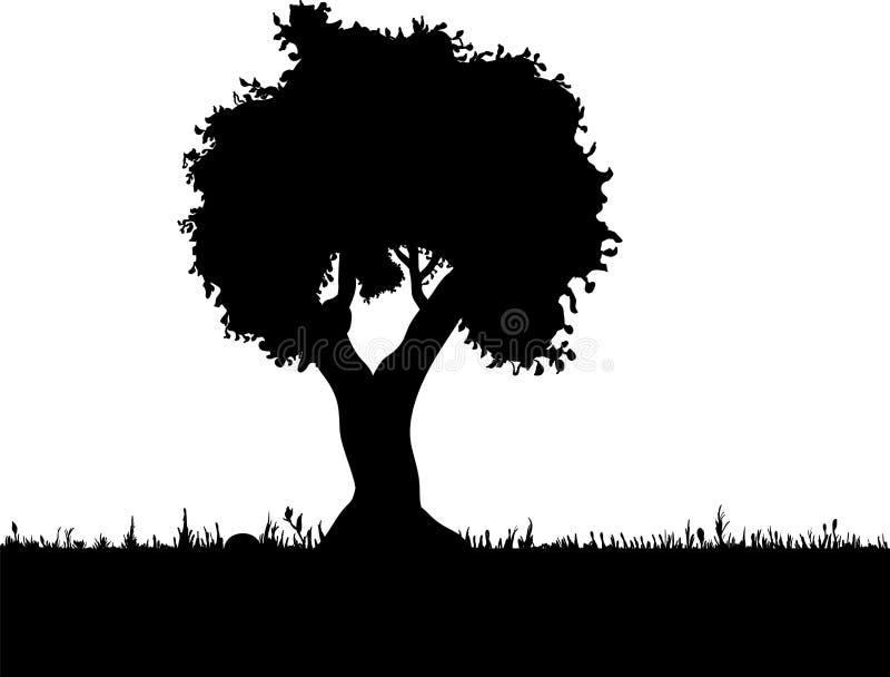 Wektorowa drzewna sylwetka, kwiaty i trawa, czarny i biały vectorial kształt, zdjęcie royalty free