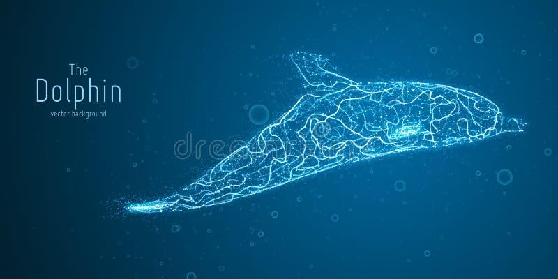Wektorowa ilustracja błękitny geometryczny delfin budujący z rozgałęziać się wykłada Abstrakcjonistyczny wektor delfin w formie ilustracji