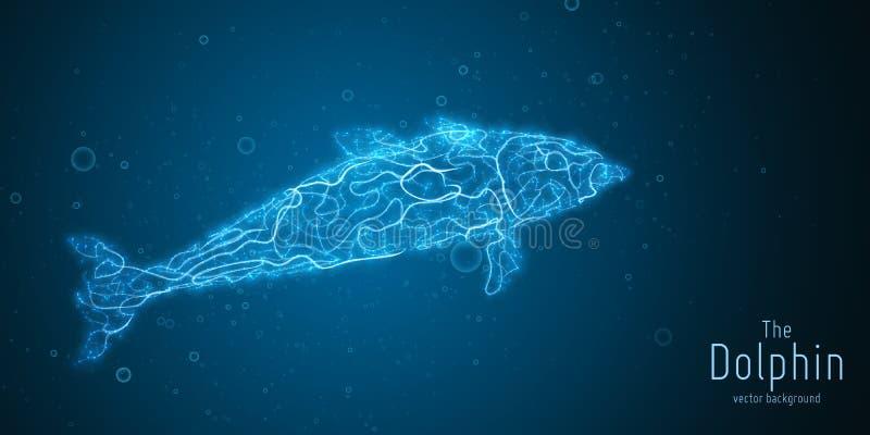 Wektorowa ilustracja błękitny geometryczny delfin budujący z rozgałęziać się wykłada Abstrakcjonistyczny wektor delfin w formie ilustracja wektor