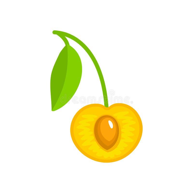 Wektorowa ilustracja biała dojrzała rżnięta wiśnia z trzonem, liściem & ziarnem, Płaska ikona świeża jagoda Odosobniony przedmiot royalty ilustracja