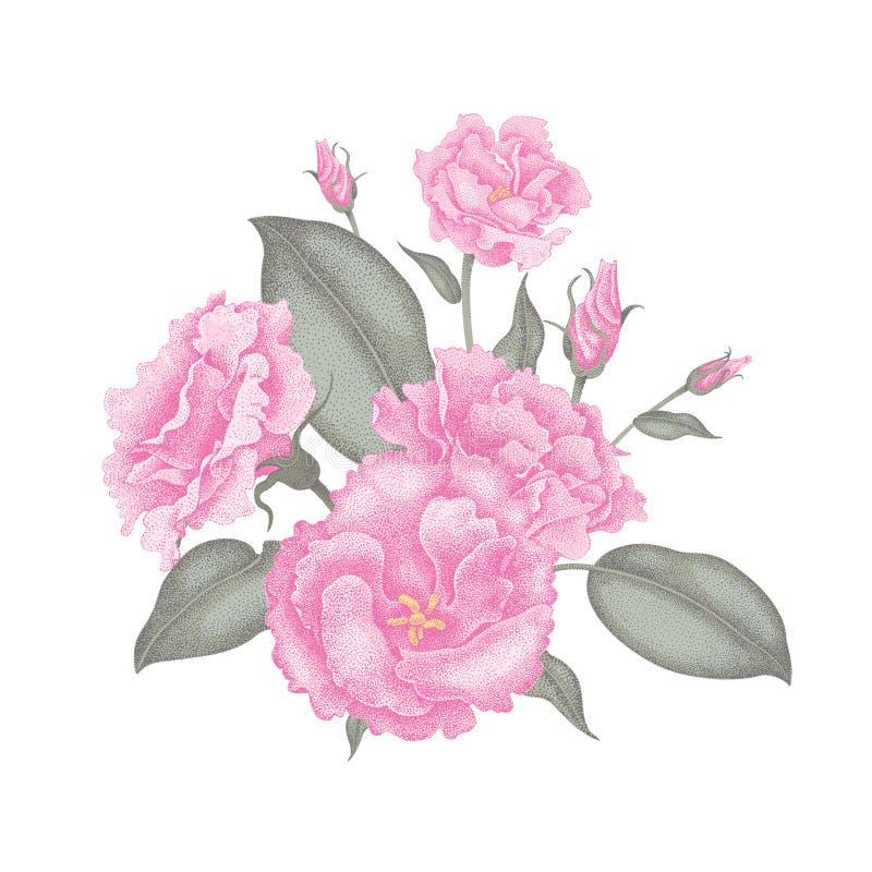 Wektorowa ilustracja bukiet kwiaty ilustracji