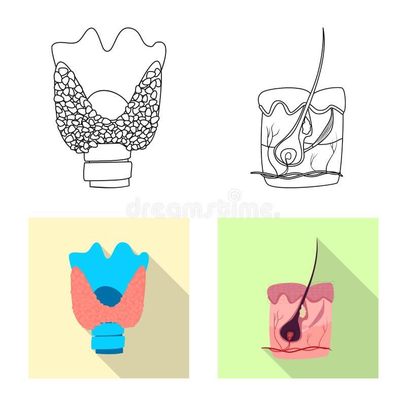 Wektorowa ilustracja ciała i istoty ludzkiej znak Set ciało i medyczna akcyjna wektorowa ilustracja ilustracji