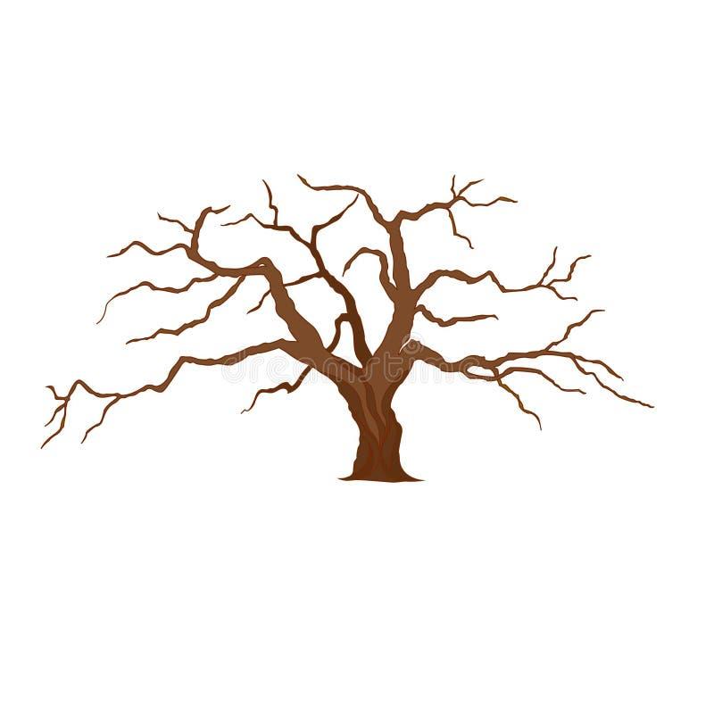Wektorowa ilustracja drzewo bez liści ilustracji