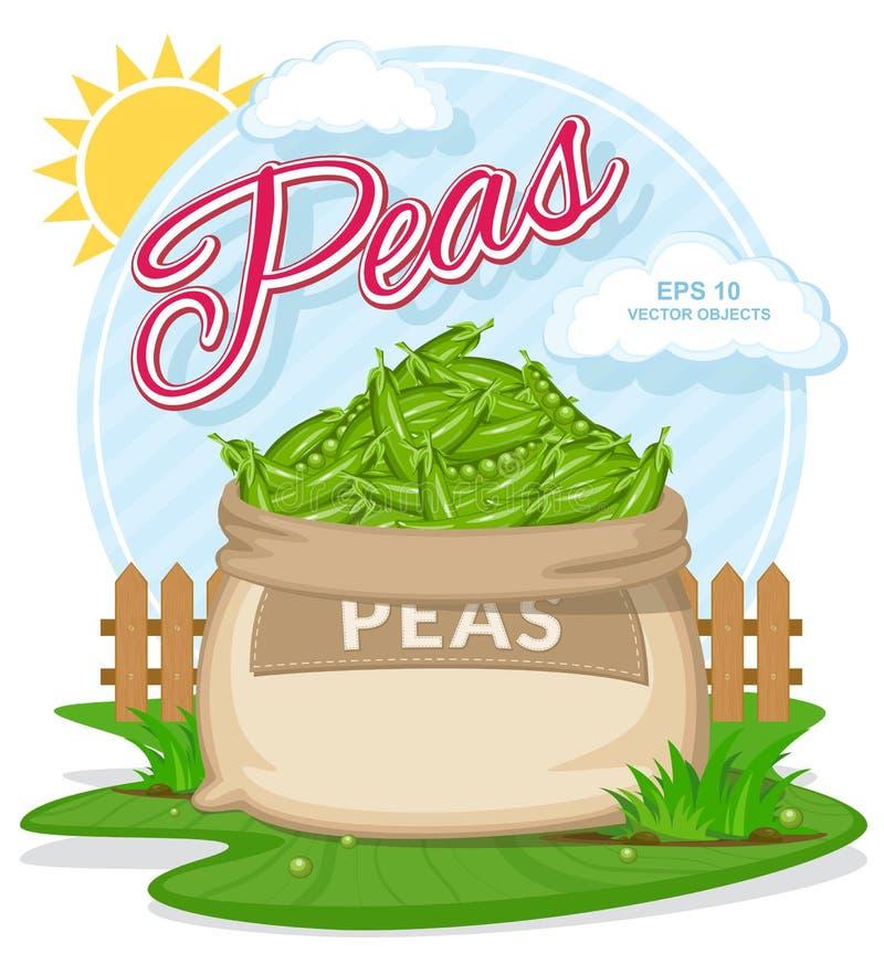 Wektorowa ilustracja eco produkty Dojrzali grochy w burlap worku Pełni worki z świeżymi warzywami ilustracja wektor