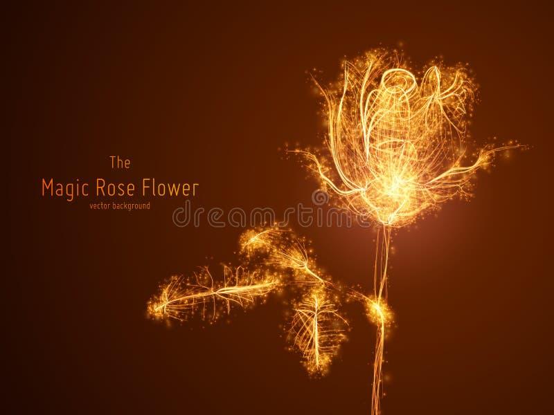 Wektorowa ilustracja jarzyć się róża kwiatu budującego z rozgałęziać się linie i rozjarzonych punktów ślada Pojęcie ilustracja wektor
